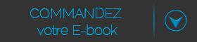 Commandez votre ebook webstratégie
