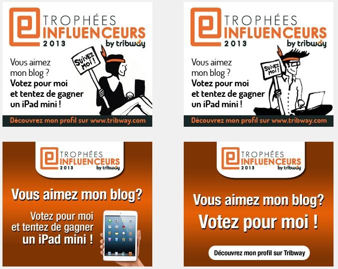 Tribway : Trophées Influenceurs 2013